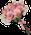 Bridesmaids Bouquet Bullet