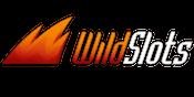 Wild Slots Large Logo