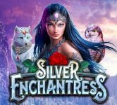 Silver Enchantress Slots