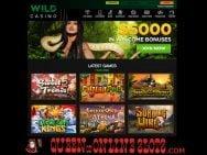 Wild Casino Lobby