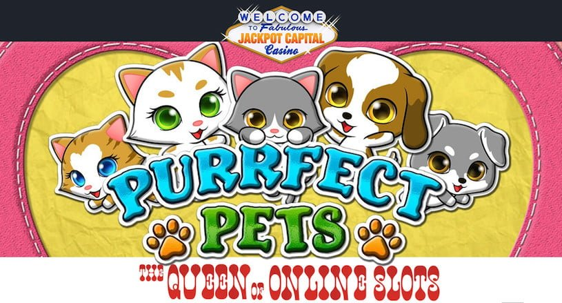 Purrfect Pets Slots Jackpot Capital